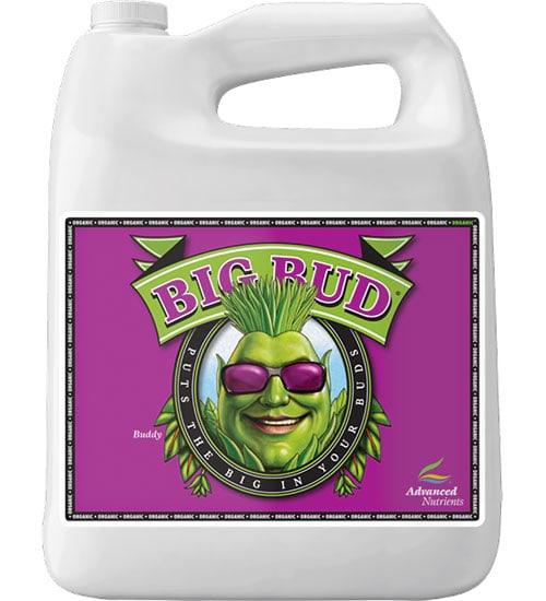 Organic Big Bud (OIM)