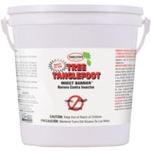 Tanglefoot Tree Insect Barrier