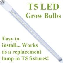 T5 LED tubes