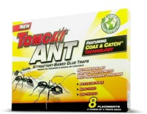 Ant Glue Traps 1