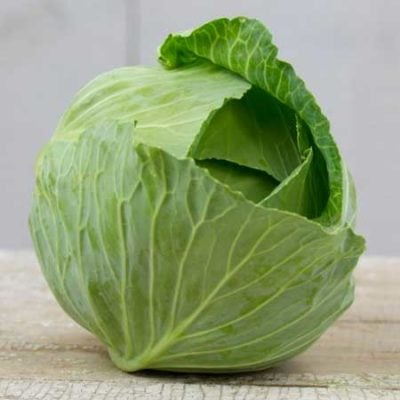 Cabbage, Brunswick 1