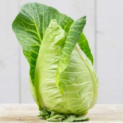 Cabbage, Cour Di Bue  1
