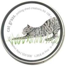 Organic Cat Grass 1