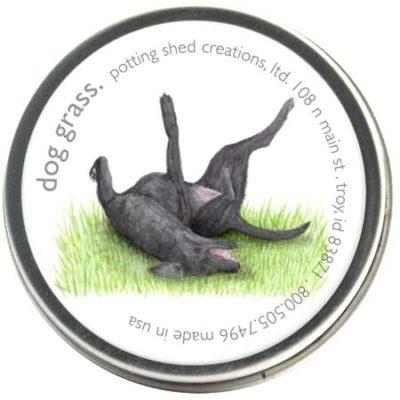 Organic Dog Grass 1