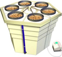 EcoGrower Hydroponic System 1