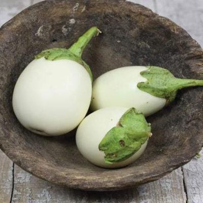Eggplant, Japanese White 1