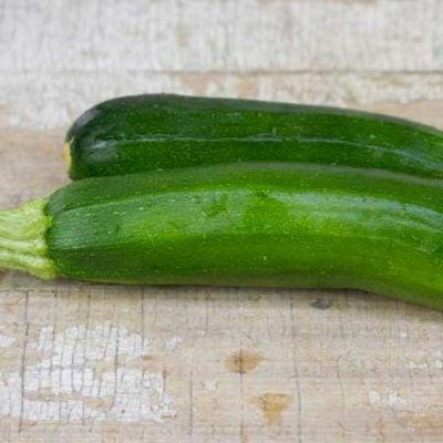 Squash, Fordhook Zucchini 1