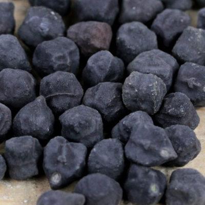 Garbanzo Bean, Kabouli Black 1