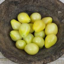 Tomato, Ivory Pear 1