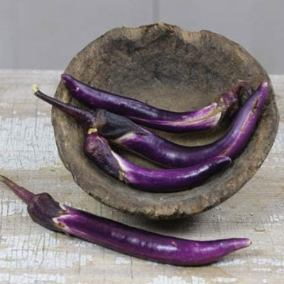Eggplant, Japanese Pickling 1