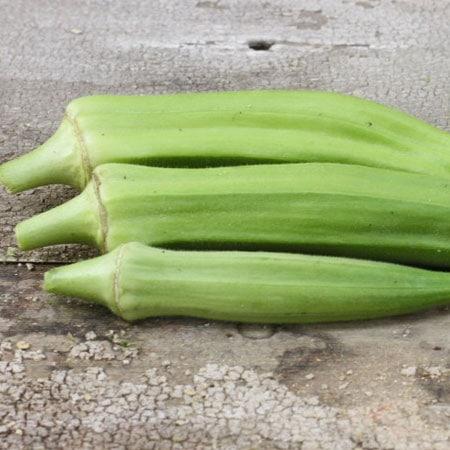 Clemson Spineless Okra Seeds Planet Natural