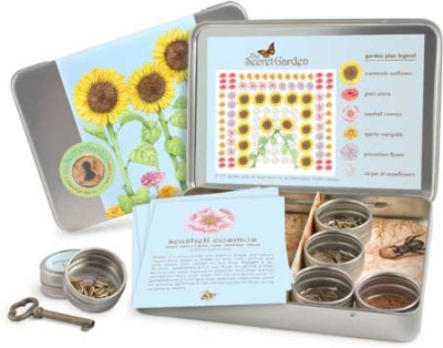 The Secret Garden Kit 1